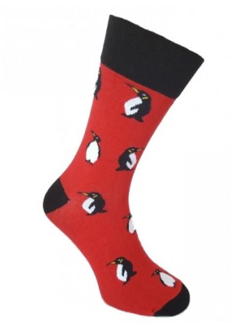 Socken Pinguin Foxysoxy - Rot